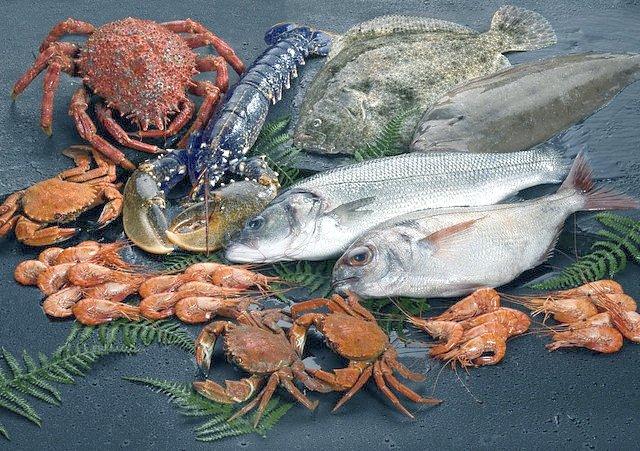 Pescado y marisco expuesto en la web de Mariskito